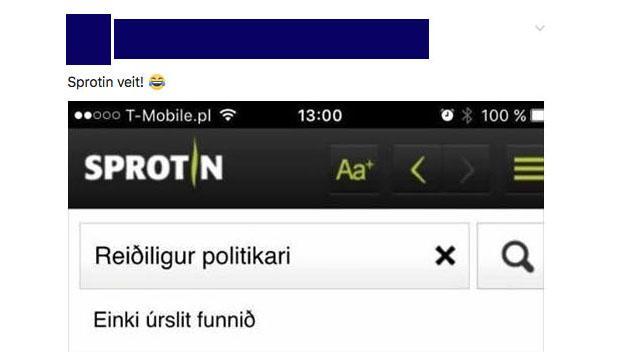 reidiligur_politikari.jpg