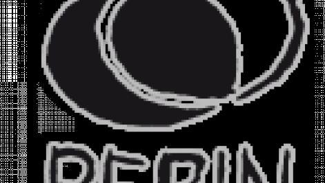 berin_logo.png