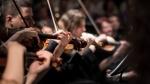 music_violin_person_string_instrument-138718.jpg